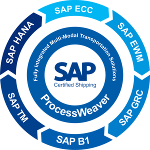 The real value of SAP in the world